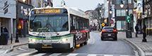 Regional Transit Consolidation