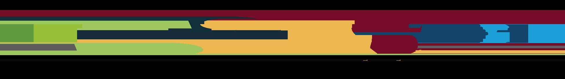 NEXTNiagara - Niagara Community Foundation - DDL -GNCC