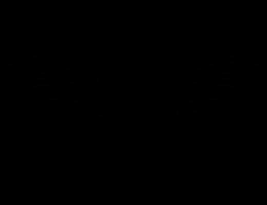 Pegasus Group Aviation